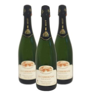 vin mousseux blanc de blanc brut La Cadiérenne